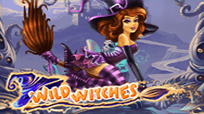 Игровой автомат Wild Witches в Вулкан